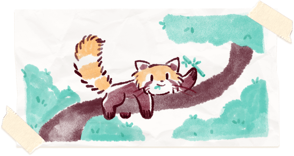 Water color painting of Ren the red panda balancing