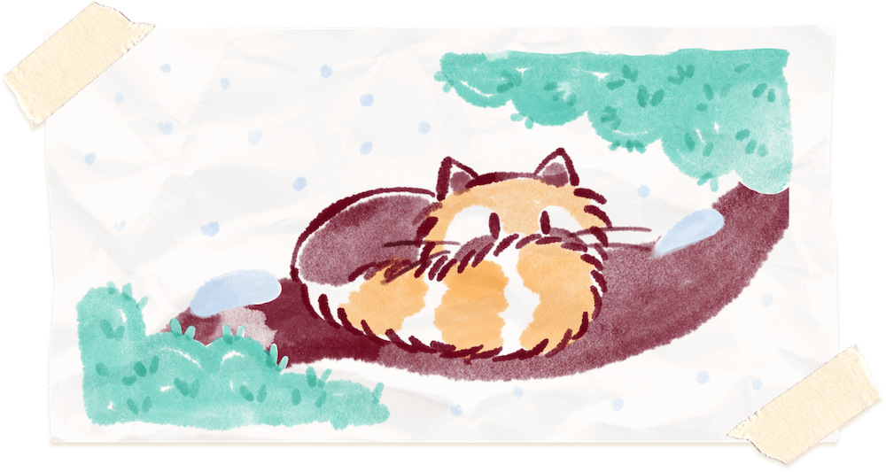 Water color painting of Ren the red panda cuddling